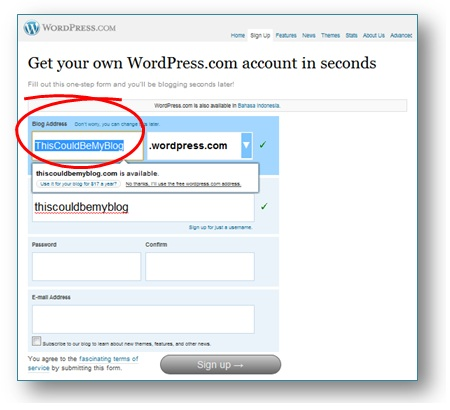 Cara Membuat Blog WordPress Gratis: Memberi nama blog wordpress